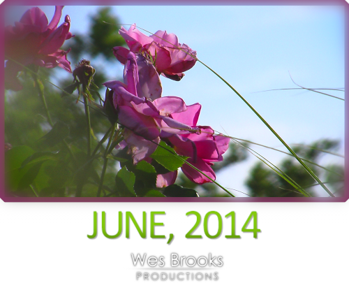 June, 2014